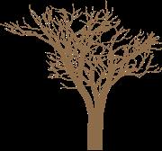 icon_tree